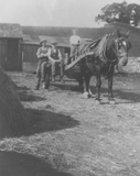 Horse and farm hands, Calside farm
